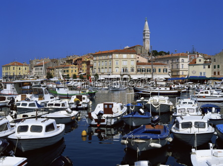 view of town over harbour rovinj
