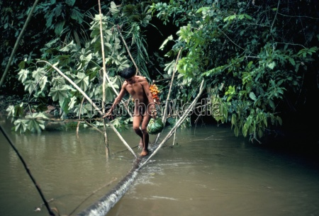 yanomami man carrying peach palm fruit