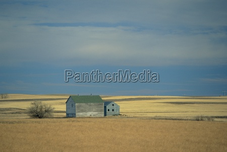 farm buildings on the prairie north