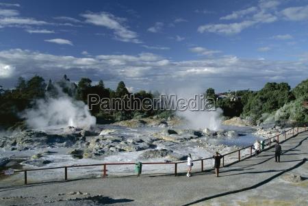 erupting geysers and mineral terraces whakarewarewa