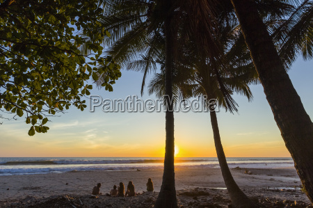 people by palm trees at sunset