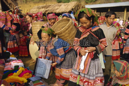 flower hmong south of sapa north