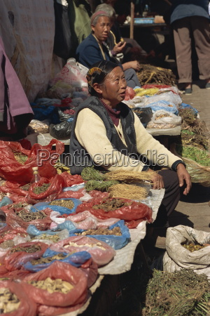 miao woman selling herbal medicines at