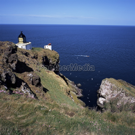 lighthouse and sea bird cliffs st