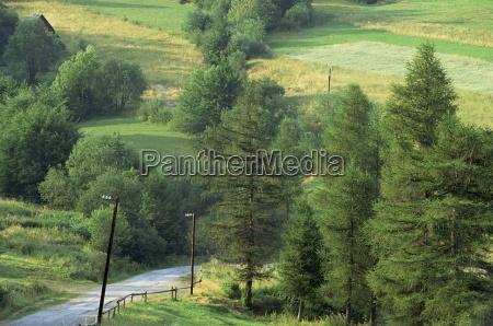 lane near the polish border near