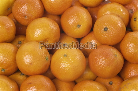 close up of clementines