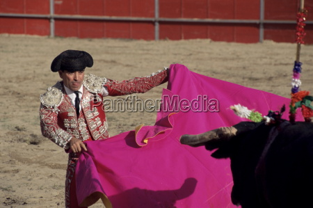 bullfighter bull and cape new fairs