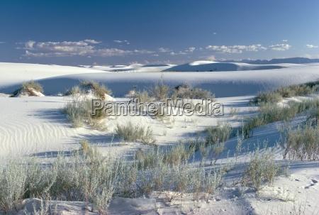 white sands desert new mexico united
