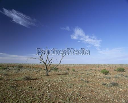 arid landscape the outback south australia
