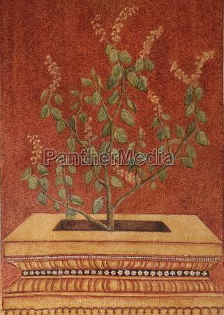 painting of tulsi holy basil ocimum