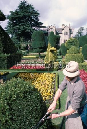topiary levens hall cumbria england united