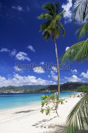 grand anse beach grenada windward islands