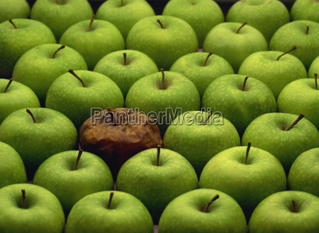 one rotten apple amongst other green