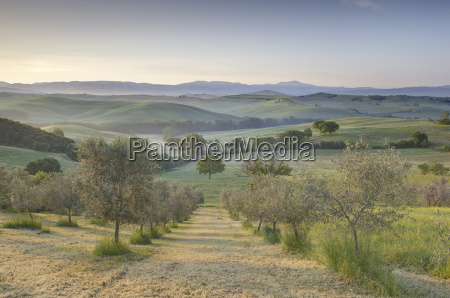 early morning view across val dorcia