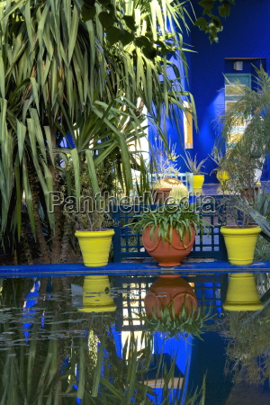 coloured pots and plants reflected in
