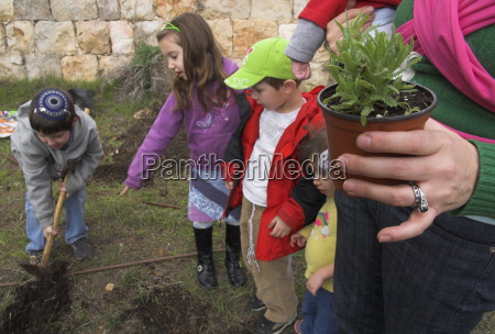 young boy digging the soil as