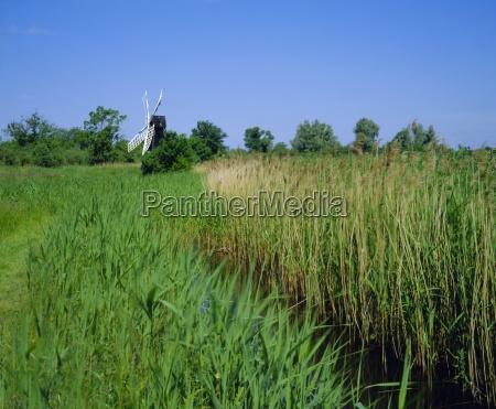 wicken fen and wind pump cambridgeshire