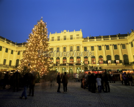 christmas tree in front of schonbrunn
