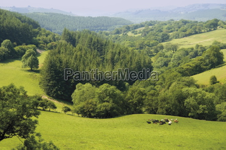 countryside powys mid wales wales united