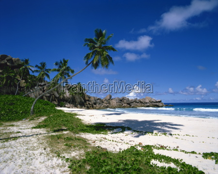 tropical coastline with eroded rock formation