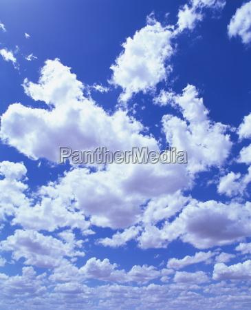 puffy white cumulus clouds in blue