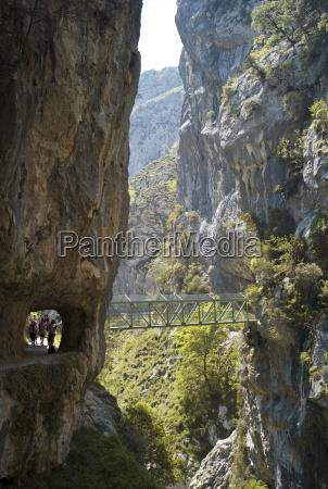footbridge over the cares gorge picos