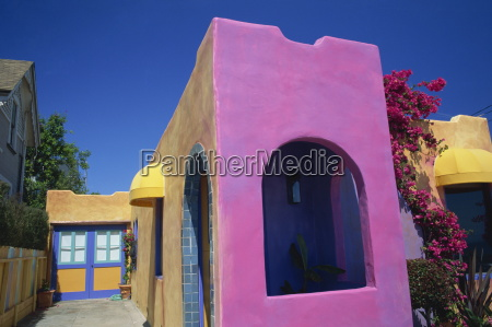 close up of pink wall of