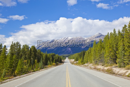 the icefields parkway road highway through