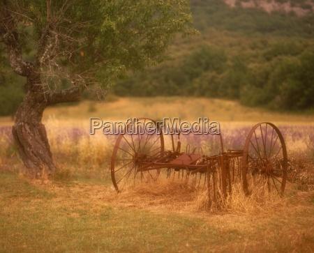 rural scene provence france