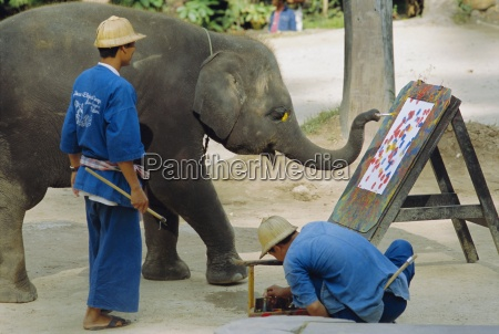 elephant painting with his trunk mae