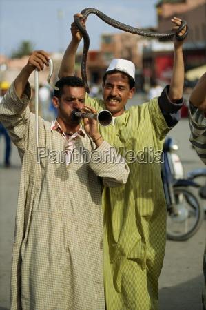 snake charmers djemaa el fna marrakech