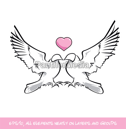 love birds pink heart