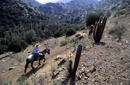 men on horseback carry supplies to