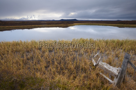 lake myvatn bird protected area in
