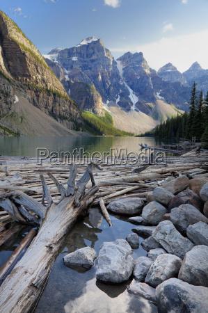 log jam on moraine lake banff