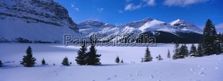 bow lake rocky mountains alberta canada