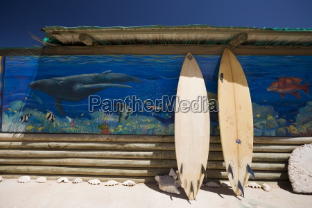 surf boards western australia australia pacific