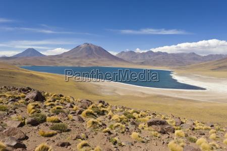 laguna miscanti at an altitude of