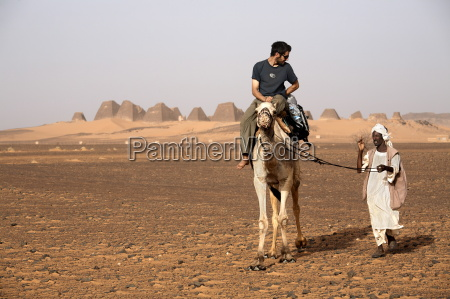 tourists take camel rides at the