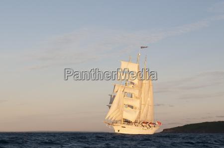 star clipper sailing cruise ship terre