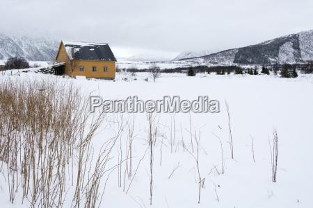 fornes vesteralen islands arctic norway scandinavia