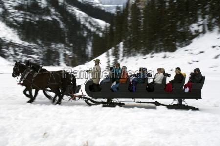 sleigh ride at chateau lake louise