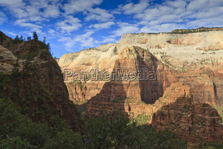 view into zion canyon from trail