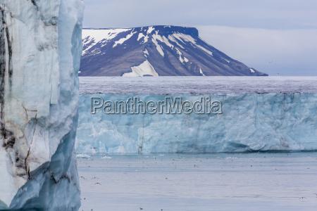 negribreen negri glacier olav v land