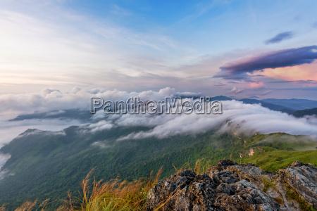 nature in sunrise on mountain thailand