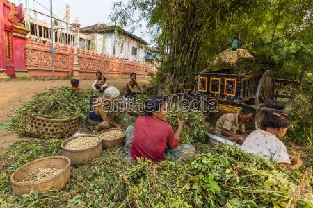 the village of angkor ban on