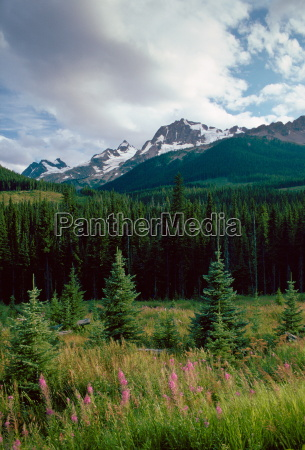 rocky mountains rockies from