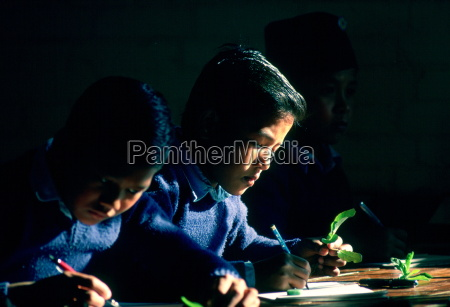 schoolboys at work during a biology
