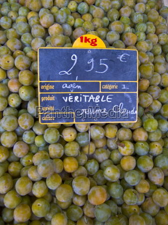 greengages reine claudes on sale in