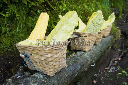 baskets of bright yellow sulphur kawah